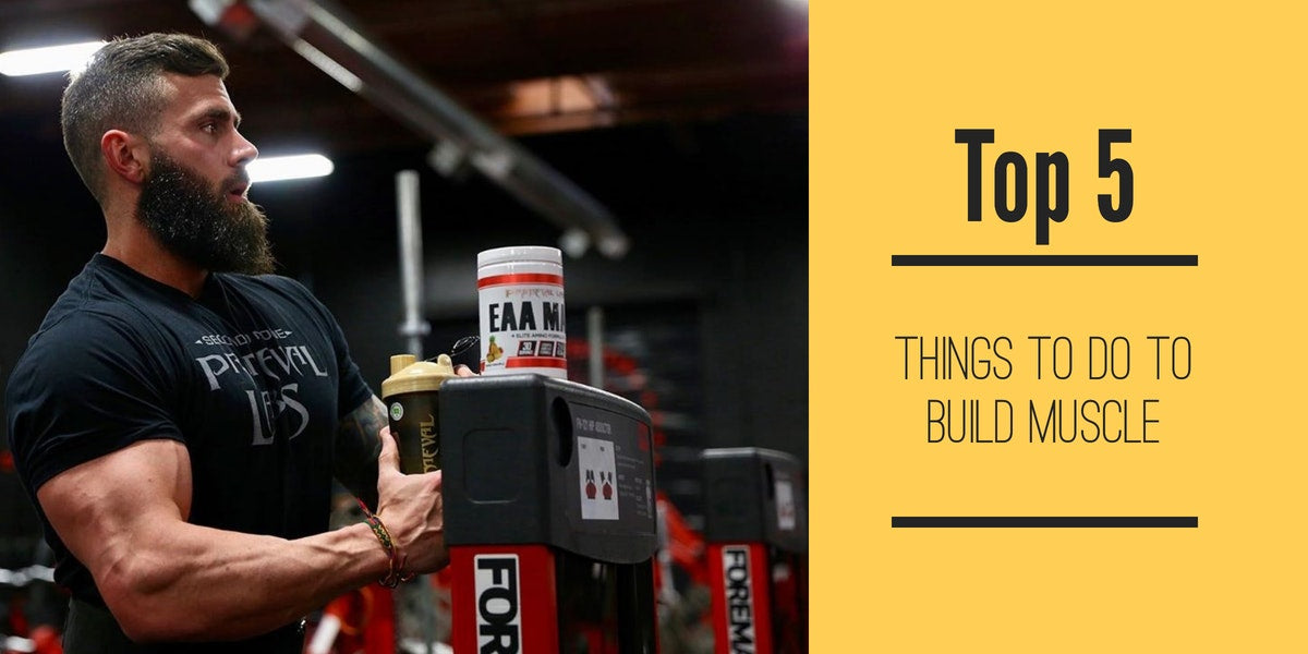 Top 5 Things to do to Build Muscle
