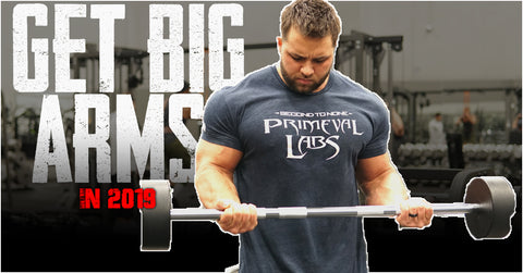 Grow bigger biceps and triceps with the 2019 Primeval Labs Big Arms Training Program