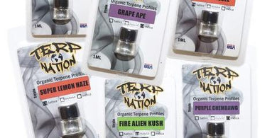 TerpNation Strain Specific Terpenes - Shag Alternative Superstore
