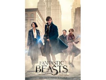 "Load image into Gallery viewer, Fantastic Beasts ""The Search"" 1,000 Piece Puzzle - Shag Alternative Superstore"