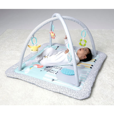 BabyZee Safari Play Gym