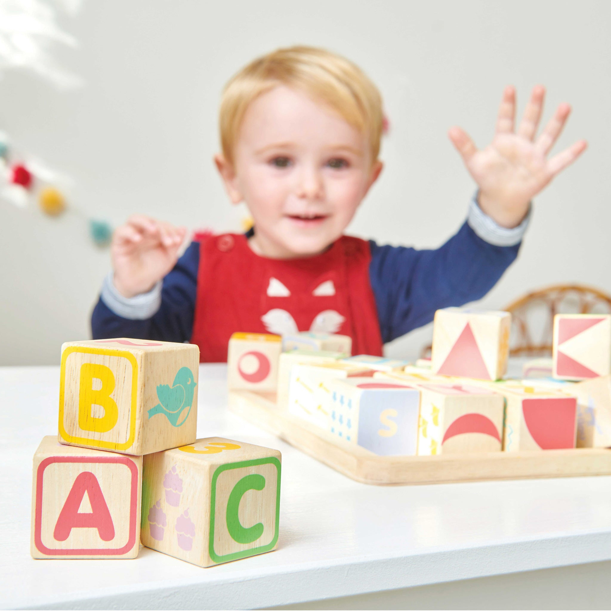 Abc Wooden Block