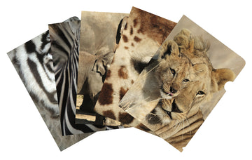 African Safari mixed pack of 5 document covers