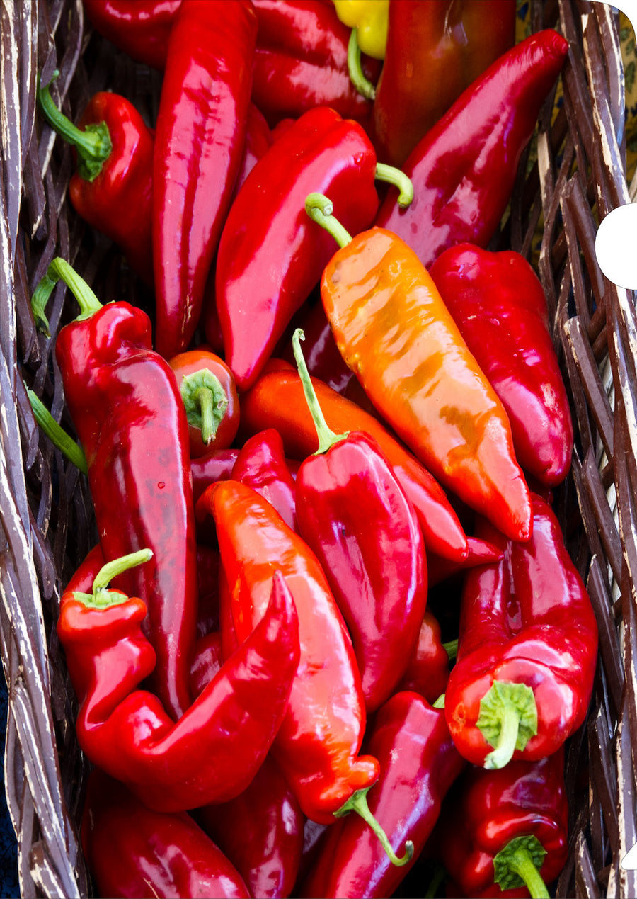 Red Chillis Document Cover