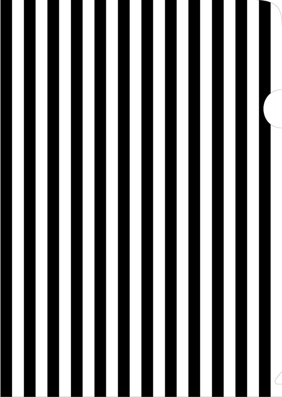 Black & White Striped Document Cover