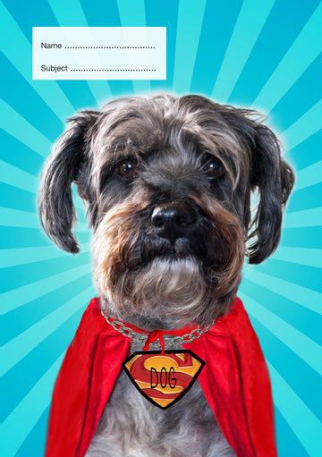 Super Dog School Book Cover