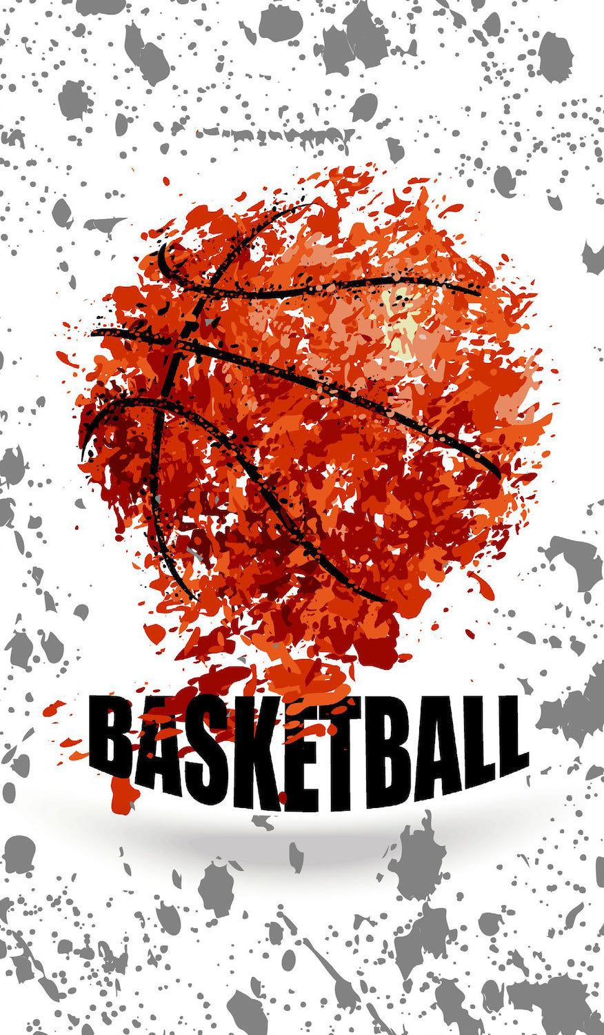 Basketball School Book Cover