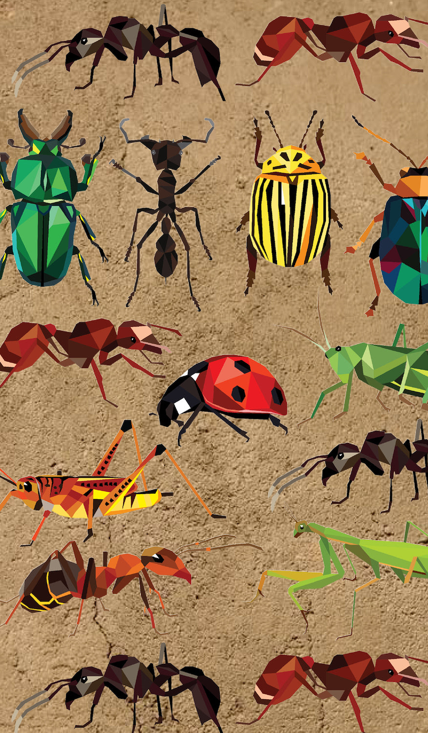 Insects School Book Cover