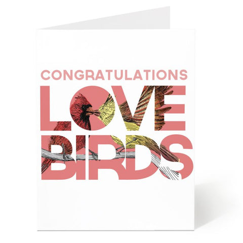 Ostockley, Congratulations Lovebirds Greeting Card (Qty 1)