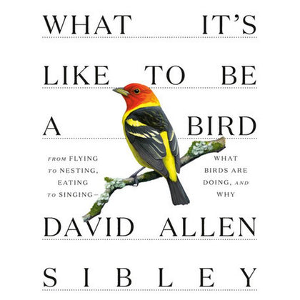 What It's Like to be a Bird by D. Sibley (HC, pp. 240)