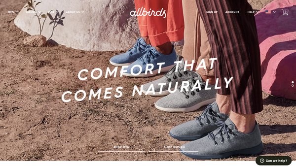 allbirds shopify ecommerce beeclever