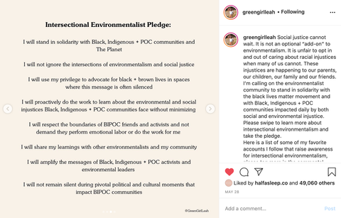 Intersectional Environmentalism Pledge by Green Girl Leah