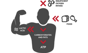 Anaerobic exercise is painful. In order to be able to withstand it, you must train your Anaerobic Tolerance with the Airofit respiratory training device