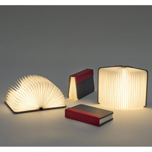 Multi-Angle Flip Book Lamp