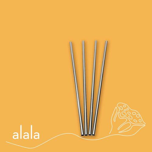 reusable stainless steel drinking straw medium
