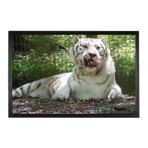 Sublimation Doormat - Wally the White Tiger Collection