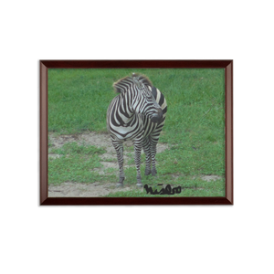 Sublimation Wall Plaque - Zoey the Zebra Collection