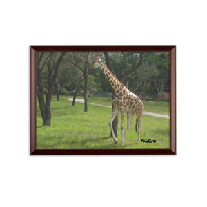 Sublimation Wall Plaque - Jeffrey the Giraffe Collection
