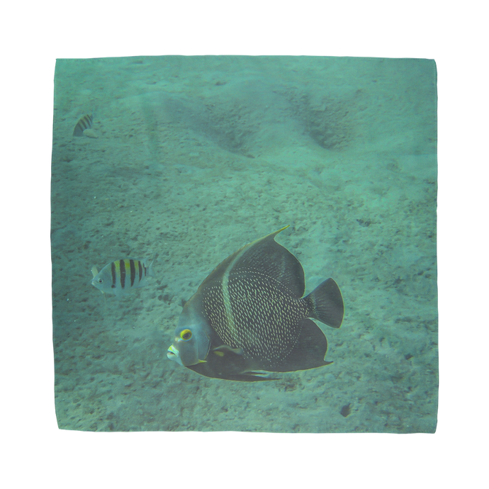 Sublimation Bandana - Reef Fish Collection - Angel