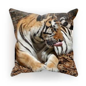 Sublimation Cushion/Throw Pillow Cover - Toby the Tiger Collection