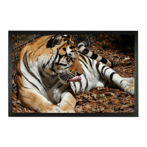 Sublimation Doormat - Toby the Tiger Collection