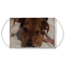 Load image into Gallery viewer, Face Mask Adjustable with Carbon Filter - Lucy Puppy