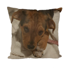 "Load image into Gallery viewer, Throw Pillow/Cushion Cover - Rescue Pets Collection - ""Lucy"" VI (3 Styles Available)"