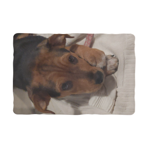 "Pet Blanket -Sublimation - Rescue Pets Collection - ""Lucy"" VI"
