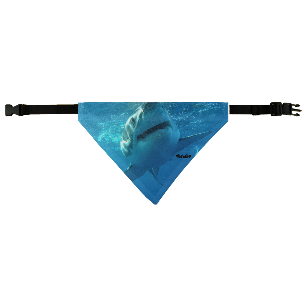 Pet Bandana - Surrounded by Sharks Collection