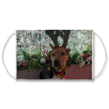 Load image into Gallery viewer, Face Mask Adjustable with Carbon Filter - Christmas Dog