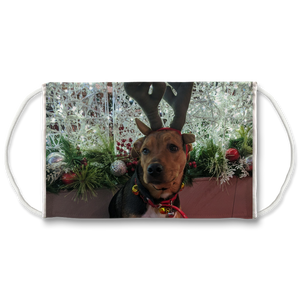 Face Mask Adjustable with Carbon Filter - Christmas Dog