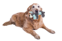 Load image into Gallery viewer, Plush 2 Set Of Matching Squeaking Chew Dog Toys (2 colors available)