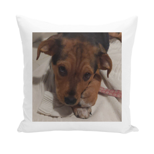 "Throw Pillow/Cushion Cover - Rescue Pets Collection - ""Lucy"" VI (3 Styles Available)"