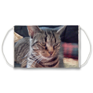 Face Mask Adjustable with Carbon Filter - Webby Tabby Cat