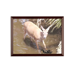 Sublimation Wall Plaque - Daisy the Deer Collection