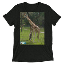 Load image into Gallery viewer, Short-Sleeve Tri-Blend T-Shirt - Unisex - Jeffrey the Giraffe