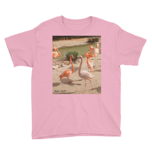 Youth/Kids' Short Sleeve T-Shirt - Flamingo Friends Collection
