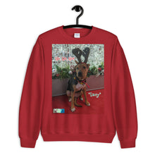 "Load image into Gallery viewer, ""Christmas Dog"" Premium Customizable Unisex Sweatshirt (""Lucy"")"