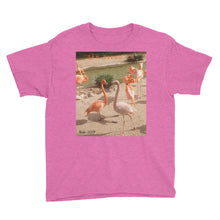 Load image into Gallery viewer, Youth/Kids' Short Sleeve T-Shirt - Flamingo Friends Collection