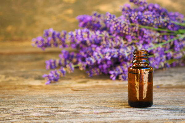 Lavender oil and lavender flowers on wooden table