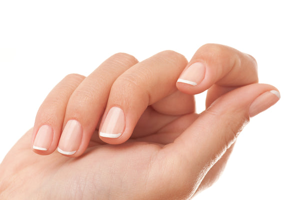 Close-up of woman's hand with French manicure