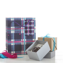 Load image into Gallery viewer, Blaeberry Tartan Small Gift Bag (SIGB01TAR)