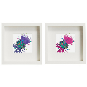 Framed Thistle Art Prints set of 2 Purple/Pink (SI-FSP-T-SET2-P/PI)