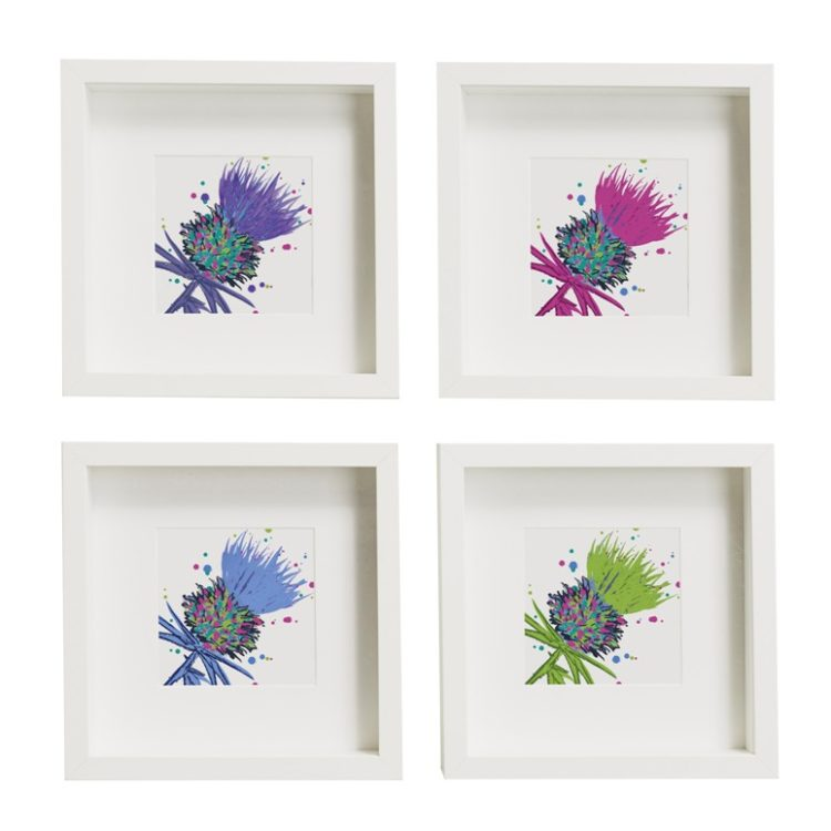 Framed Thistle Art Prints set of 4 (SI-FSP-T-SET4-P/PI/B/G)