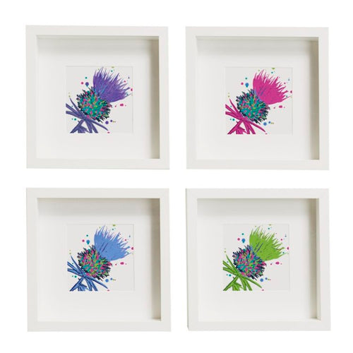 Thistle Art Prints set of 4 unframed (SI-SP-T-SET4-P/PI/B/G)