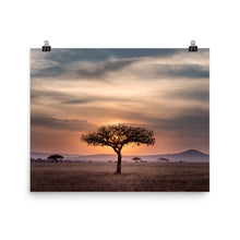 Load image into Gallery viewer, Sunset in the Serengeti Poster