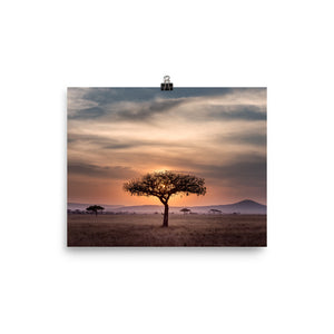 Sunset in the Serengeti Poster