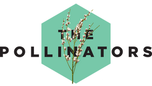 The Pollinators | Webshop