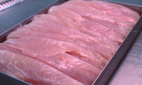 Fresh Trevelly Fillets ( 500 grams)