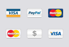 Intrinsyc Technologies Corporation Online Payment